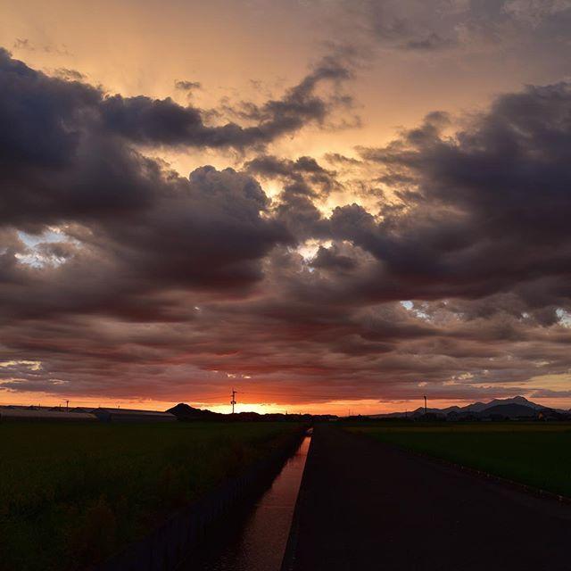 今日はとても暑かった。ひととおりの儀式が終わり、明日手続きを終えるとひと段落。仕事に集中出来ます。誰も来ない道で、風に吹かれてきました。今日は寝ます。おやすみなさい。#イマソラ #mysky #sky #sunset #fine #hotday #field #cloud #wind