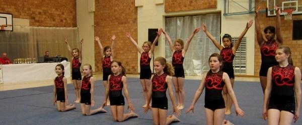 Турнир по гимнастике в Воррикене
