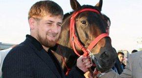 Лошади Кадырова на высоте