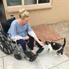 Wheelchair For Cats Office Chair Brown House Pets Users