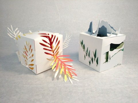 Exploding cube 2-2