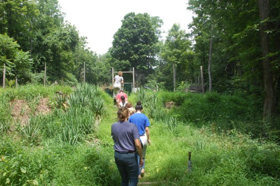 Toby leads a group of papermaking students to the entrance of the farm.