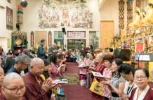 圖為善信佛子跪求加持。
