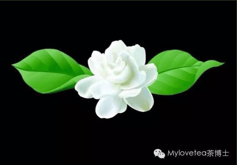 flower tea poetry