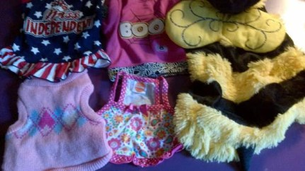 post 261 dog outfit 6