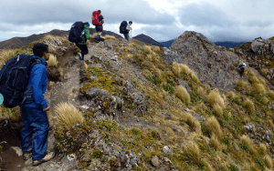 Ridge travel