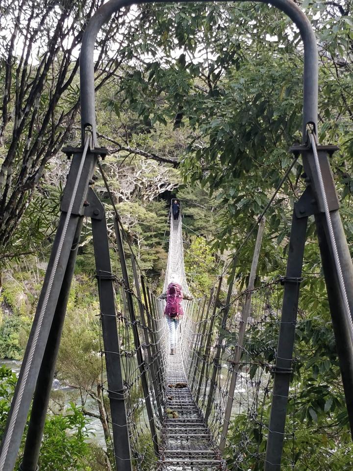 Swing bridge over the Waiohine River