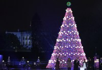 National Christmas Tree lighting lottery open this weekend ...