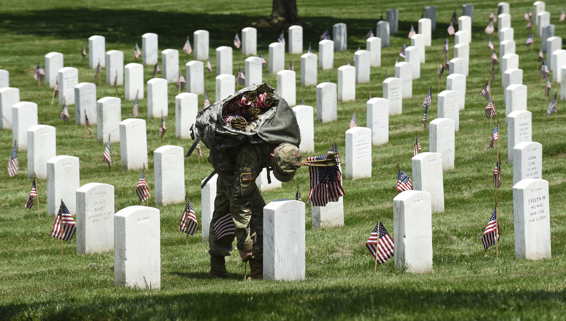 Sol Rs Place 230k Flags In Annual Event At Arlington