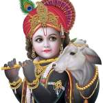 Little krishna images for whatsapp dp and profile picture