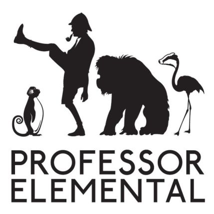 Professor Elemental - Steampunk music