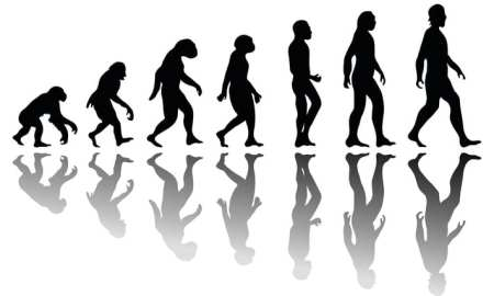Darwinist doctrines are causing serious damage to the fabric of our society