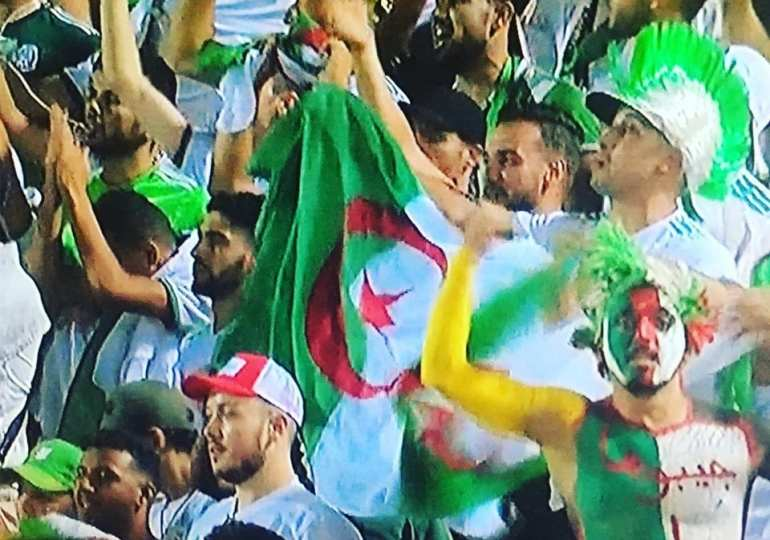 Algerians have gone missing after winning the African cup of nations