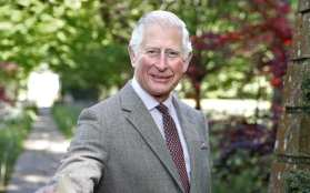 Prince Charles caught up in art scam