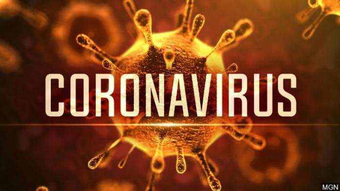 Coronavirus: A guide to everything you need to know