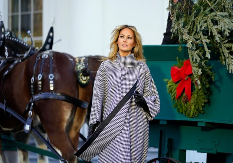 FLOTUS Roasted Over White House Christmas Tree