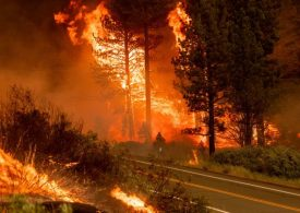 Canada's BC declares state of emergency as wildfires surge