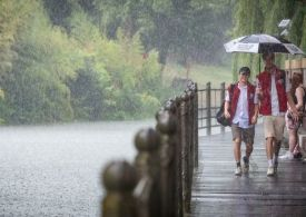 Met Office: Yellow Alert issued for heavy thunderstorms today