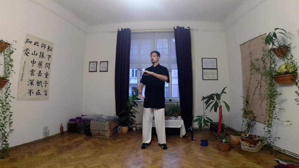 Taiji 13 Coordination Training