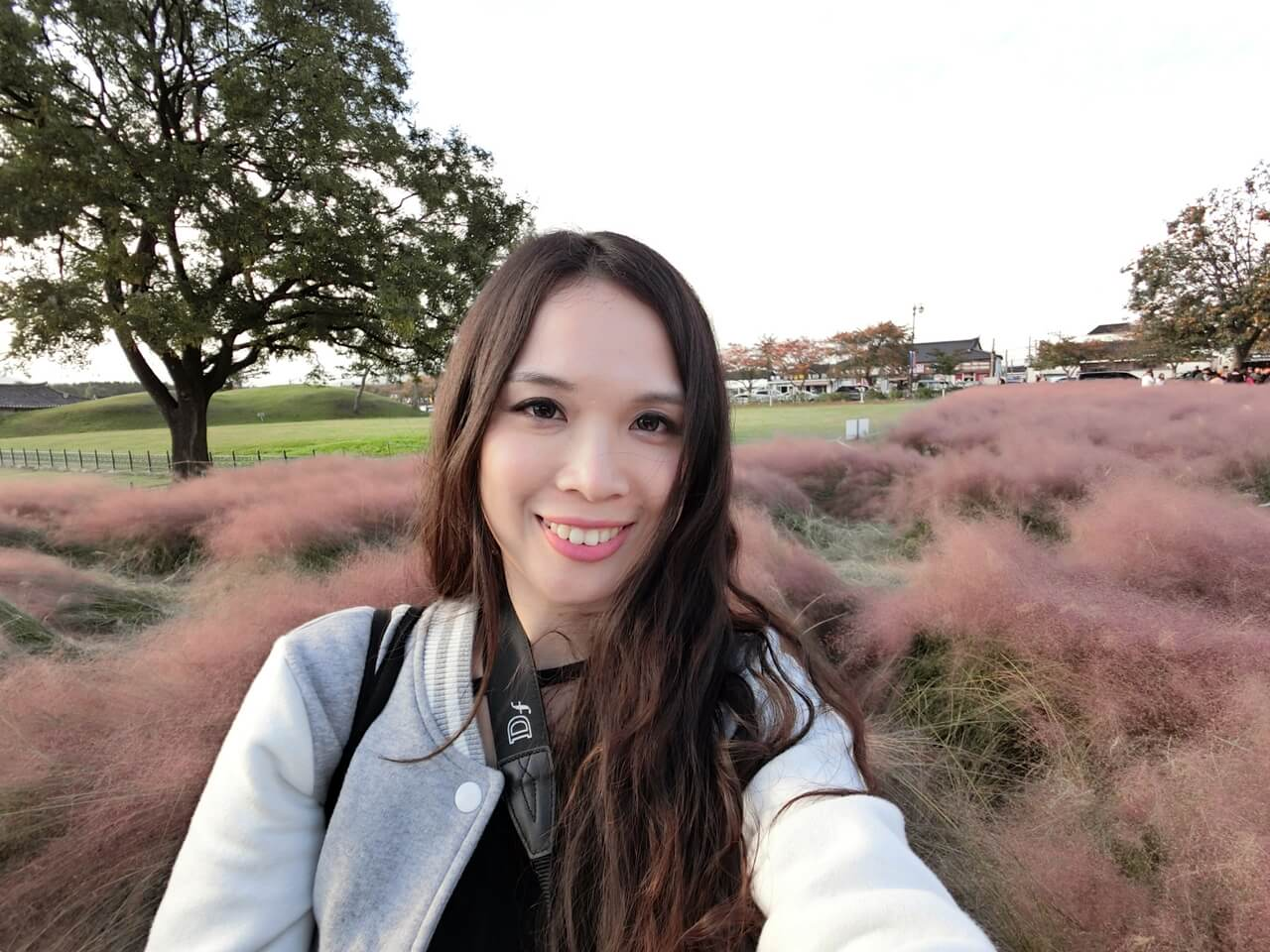 韓國自由行,秋季限定必去慶州觀星台看粉紅芒草,IG打卡熱點