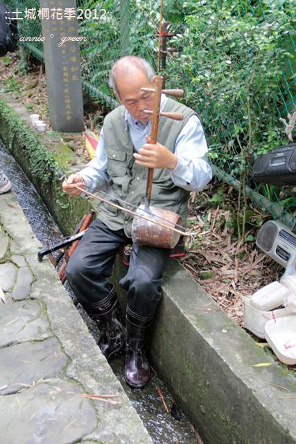 【遊記】土城桐花季2012