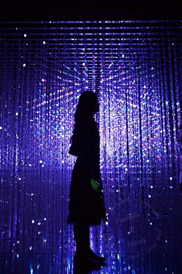 【展覽】teamLab: 舞動!藝術展 & 學習!未來の遊園地~拍照有意境但人很多 @吳大妮。Annie