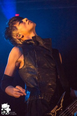direngrey2013_32.jpg