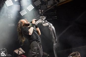 Korn 2015