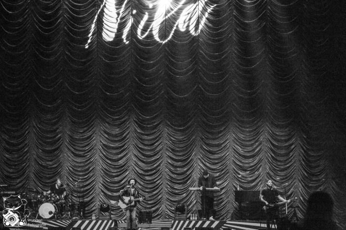 Niila 2016
