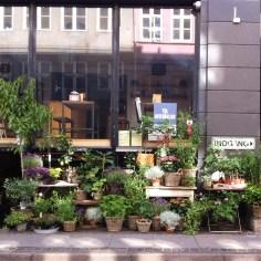 green Copenhague - Wundertute