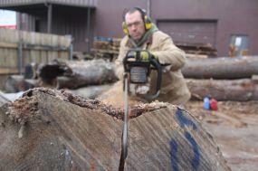Scott Wunder WunderWoods quartersawing white oak log