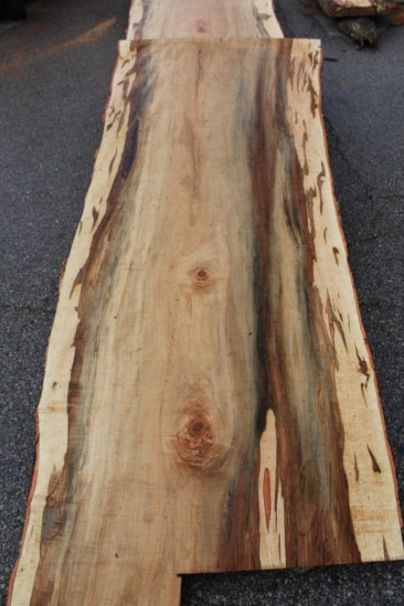 WunderWoods ambrosia maple natural live edge slab table top