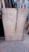 WunderWoods elm crotch natural live edge slab table top