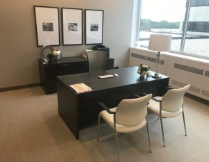 Office-Suite-with-credenza