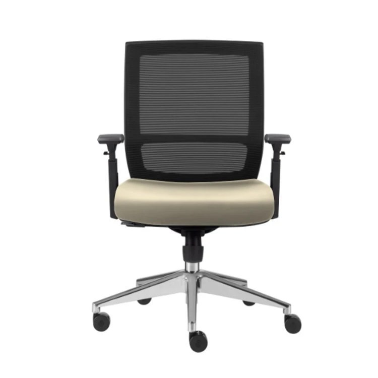 Entail Task Chair
