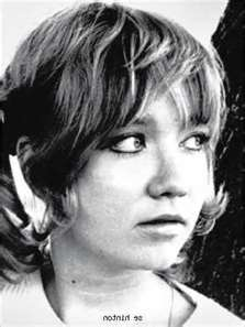 S. E. Hinton : hinton, Hinton, Outsiders, Create, Young, Adult, American, Literature, Since, 1865--Spring