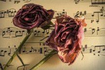 An Evening of Classical Music [s,k]