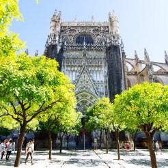 Orange Tree Courtyard - Seville Cathedral