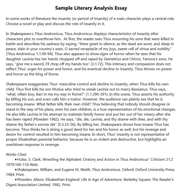 literary criticism essay example