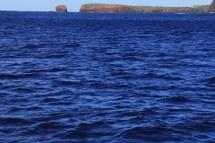 Lanai Snorkel Trip May 22 Hawaii 015