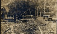 Image of Lumber being loaded on a train -- used to illustrate the business of Rowland Cobb