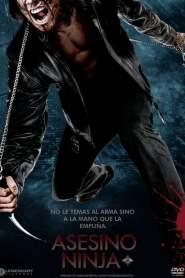 Ninja Asesino
