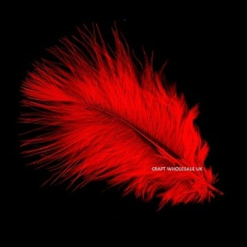 marabou-feathers-red
