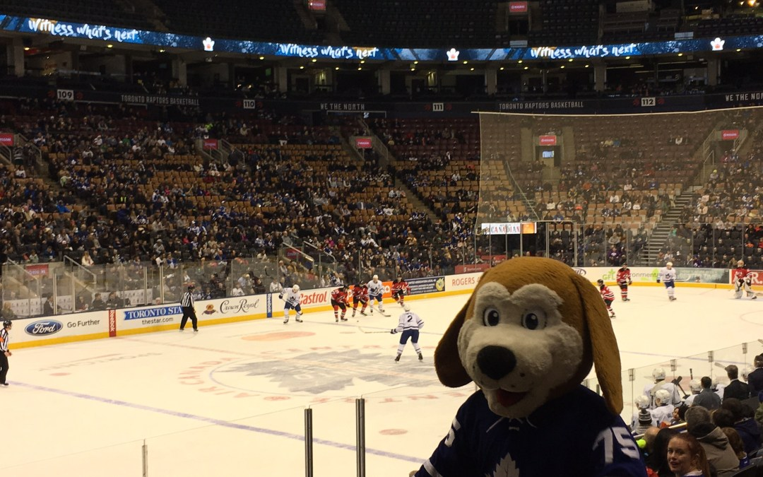 Toronto Marlies at the Air Canada Centre