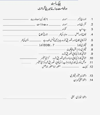 Punjab Workers Welfare Board Application Form Guidance