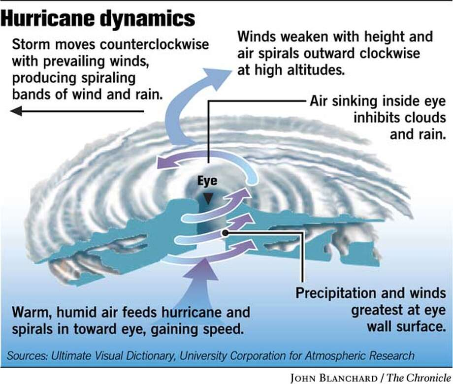 hurricane formation diagram lima bean seed part fuel: warm, moist air over warm ocean water / how a category 5 monster is formed ...