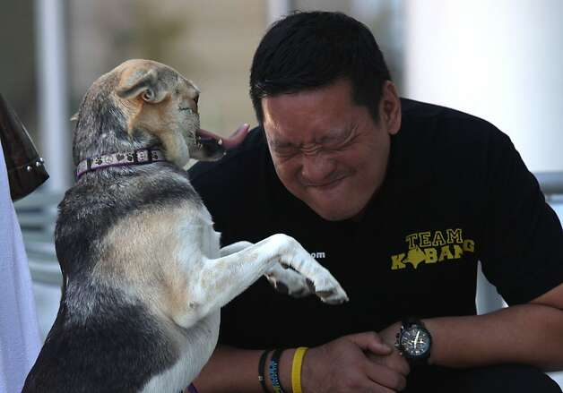 Veterinarian Anton Lim of the Philippines plays with Kabang, whom he will escort home on Thursday. Photo: Liz Hafalia, The Chronicle