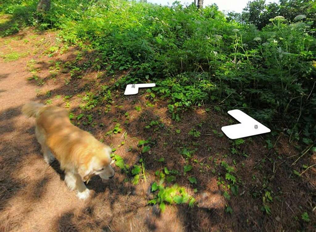 Hold on, something smells good here. (Sniff, sniff.) Photo: Google Street View