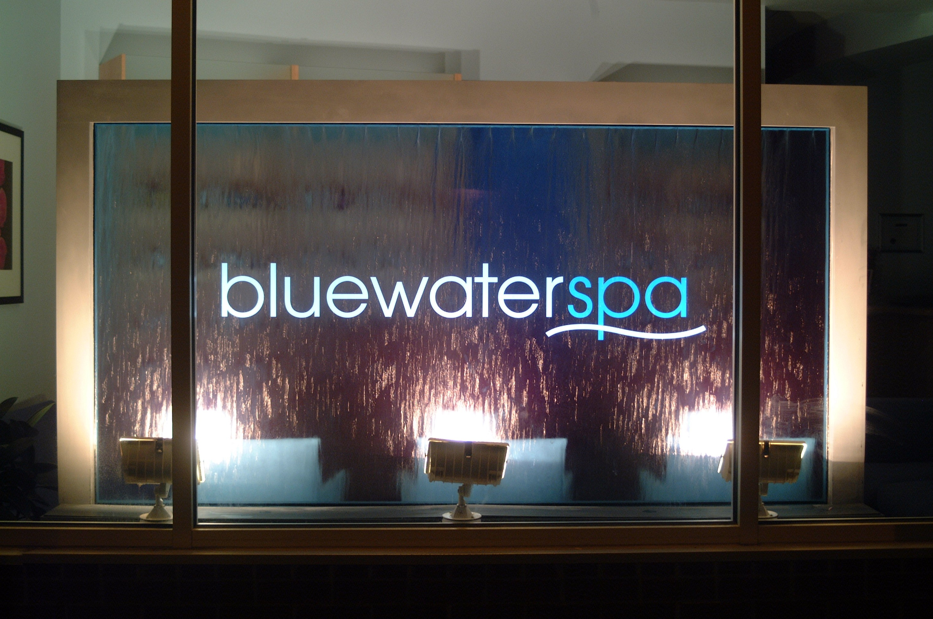 Raleigh Day Spa And Medical Spa Newsletter Includes