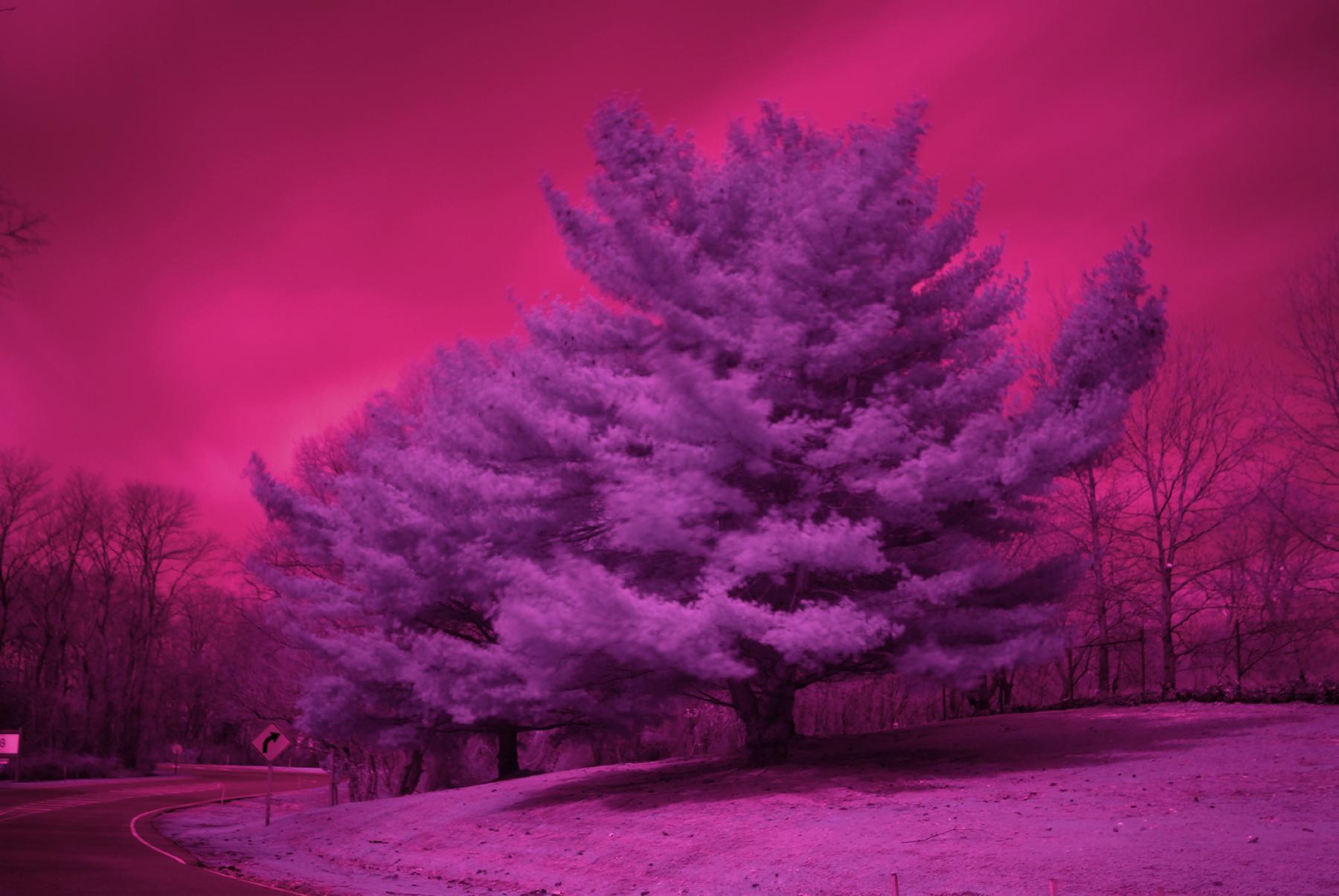 Schneider B W Infrared Filters For Digital Cameras